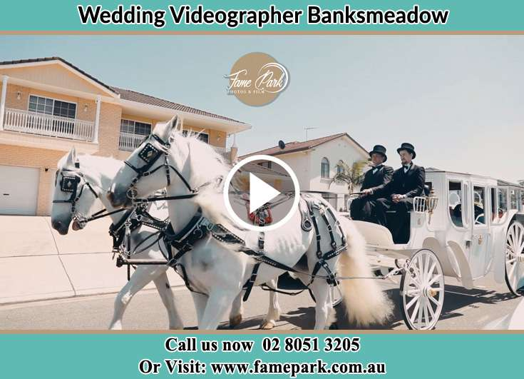 Bride and Groom wedding carriage Banksmeadow NSW 2019
